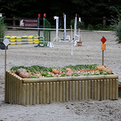 Obstacle Etal de légumes
